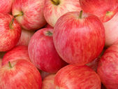 Fruit apples red — Stock Photo
