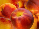 Fruit nectarine — Stock Photo