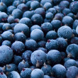 Berries frozen — Stock Photo