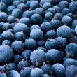 Stockfoto: Berries frozen