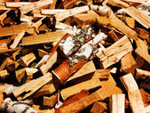 Fire wood the chipped birch — Stock Photo