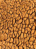 Cracks in a ground — Stock Photo