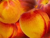 Ovoce broskev a meruňka hybridní — Stock fotografie