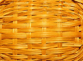 Weaving of branches of a bush — Stock Photo
