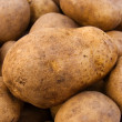 Potato tubers — Stock Photo #1321810