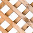 Lattice from a tree — Stock Photo