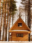 The house from logs — Stock Photo