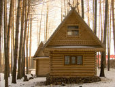 Small house in wood — Stock Photo