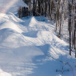 Mountain  snow  winter — Stockfoto
