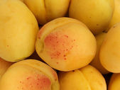 Fruit apricots — Stock Photo
