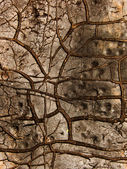 Cracks roofing material — Stock Photo