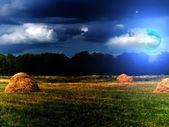 Wood sky clouds moon — Stock Photo