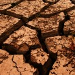 Stock Photo: Cracks ground