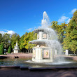 Royalty-Free Stock Photo: Peterhof. Roman fountains