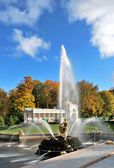 Peterhof. Fountain Samson — Stock Photo