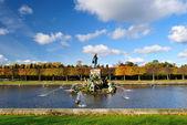 Peterhof, Fountain Neptune — Stock Photo