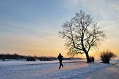 бег на закате — Стоковое фото