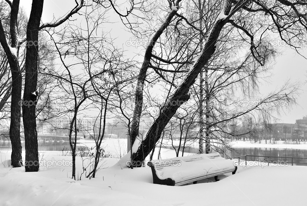 A lonely bench in the park during a snowfall — Stock Photo #1493074