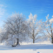 Stock Photo: Winter in Finland