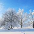 Winter in Finland — Stock Photo
