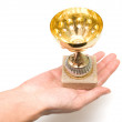 Cup to the winner — Stock Photo