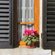 Stock Photo: Flowers at Window, Siena, Tuscany, I