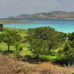 Sardinia Coast in summer, Italy — Stock Photo #1249425