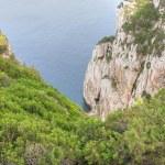 Sardinia Coast in summer, Italy — Stock Photo #1249438
