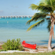 Royalty-Free Stock Photo: In the middle of the Keys, Florida, Janu