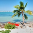Stock Photo: In middle of Keys, Florida, Janu