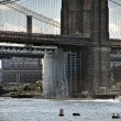 Royalty-Free Stock Photo: Brooklyn Bridge from Pier 17, 2008