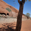 Uluru, Ayers Rock, Northern Territory, A — Foto de Stock   #1257103