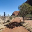 Uluru, Ayers Rock, Northern Territory, A — 图库照片