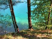 Auronzo Lake, Italy — Stock Photo