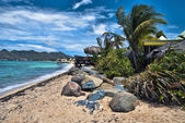Coast in Saint Maarten Island — Stock Photo