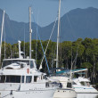 Stock Photo: Port of Port Douglas, Queensland
