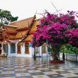 Temple near Changmai, Thailand - Stock Photo
