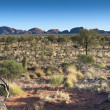 Australian Outback — Stock Photo