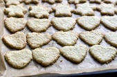 Cookies on a baking tray — Stock Photo