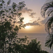 Stock Photo: Tropical Sunset