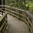 Stock Photo: Wooden Pathway