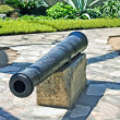 Royalty-Free Stock Photo: Cannon