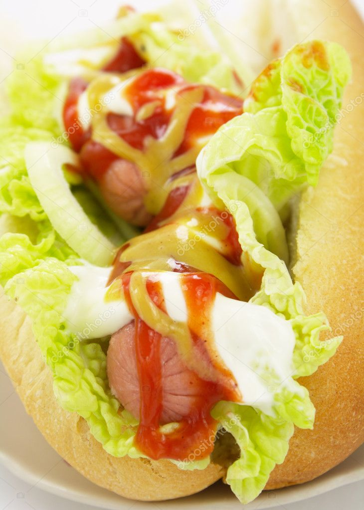 Hot dog with vegetable close up  Stock Photo #2247570