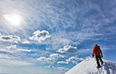 Reaching the summit — Stock Photo