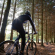 Mountain biker — Stock Photo #1258599