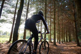 Mountainbiker — Foto Stock