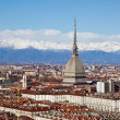 Stock Photo: Turin panoramic view