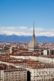 Turin panoramic view — Stock Photo