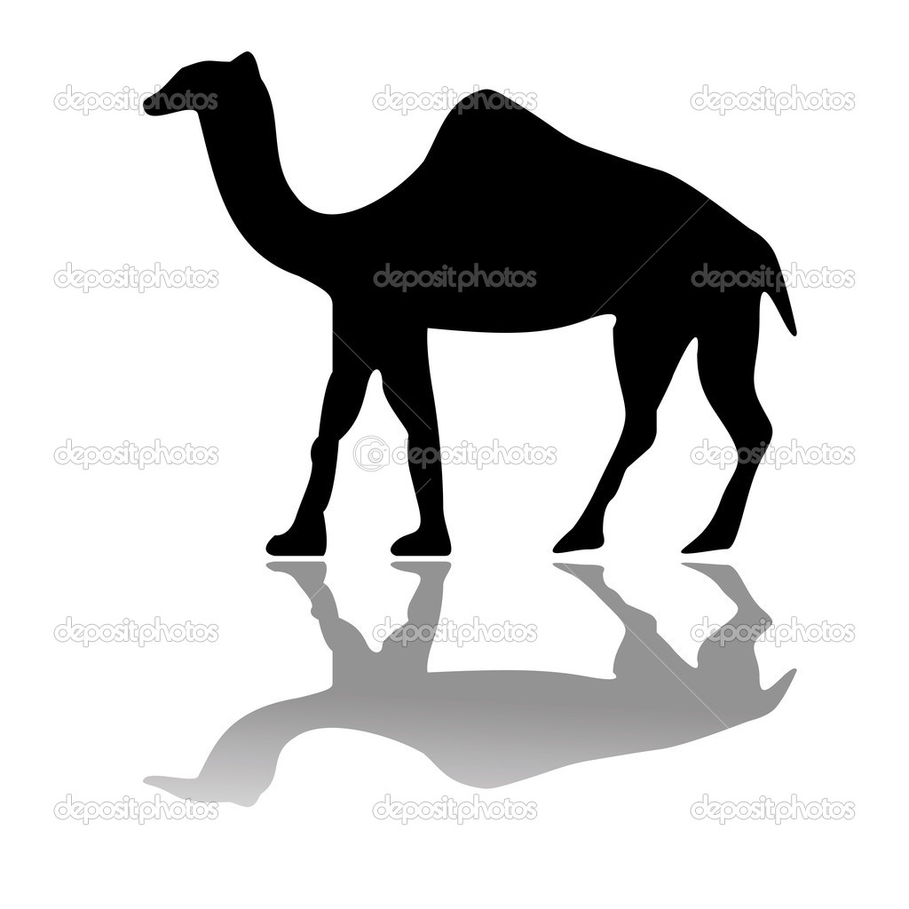 Camel izolated on white, vector art illustration  Stock Vector #1245122