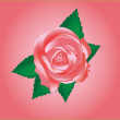 Vector pink rose — Stock Vector